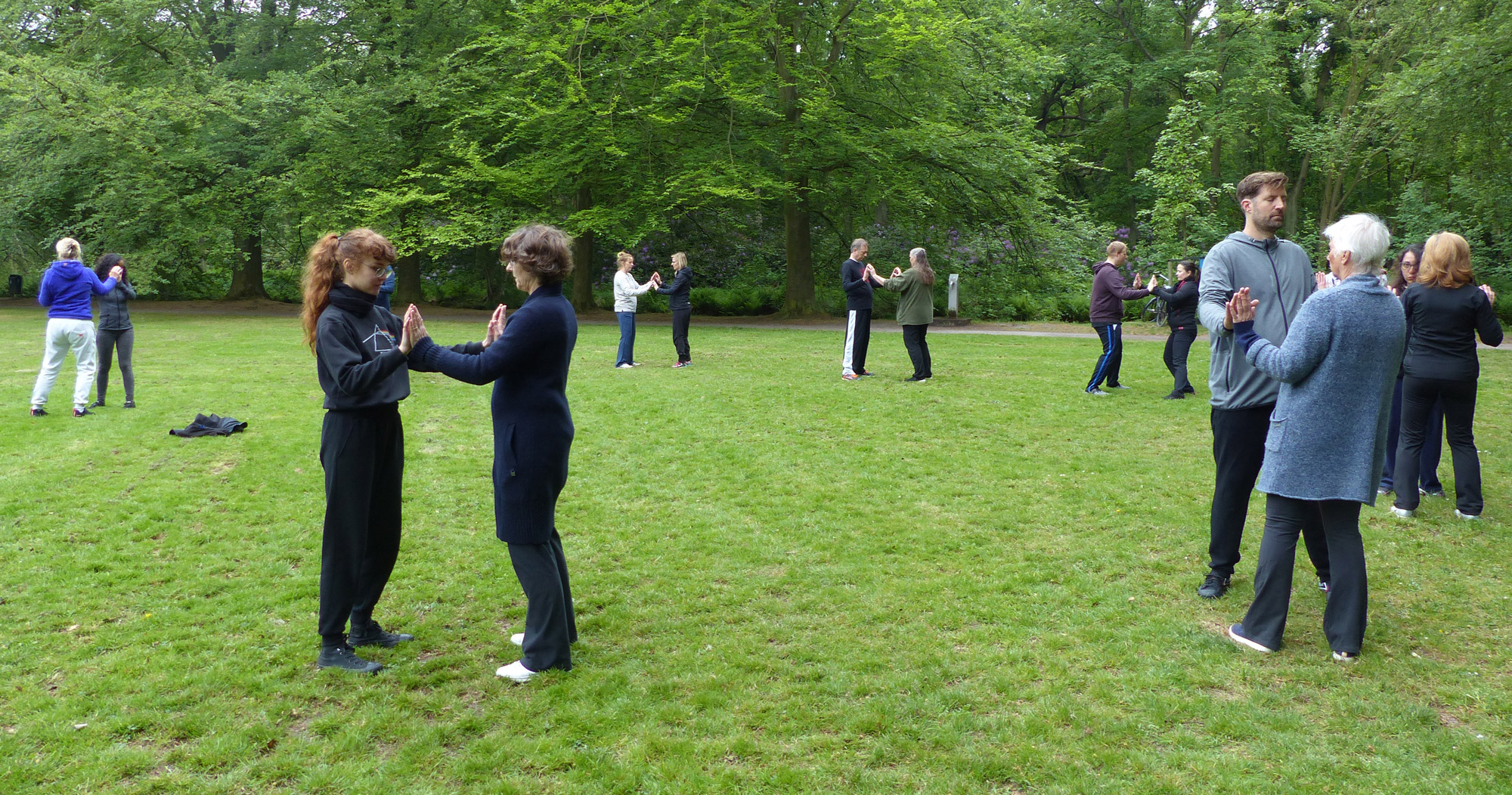Ron wiggers qigong instructeur opleiding dag instructor day