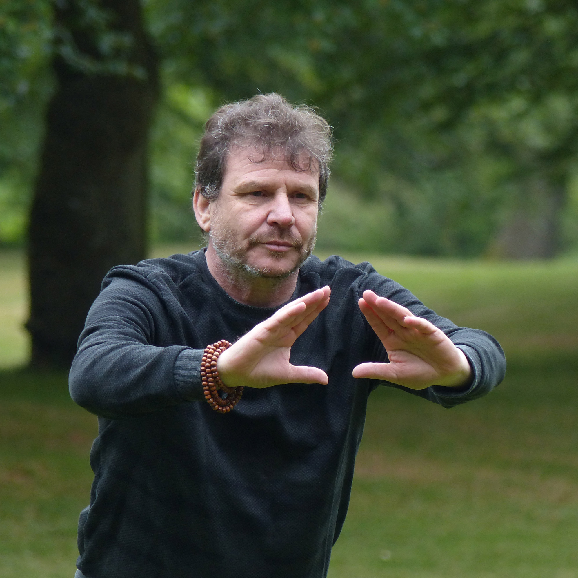 ron wiggers qigong teacher instructor instructeur