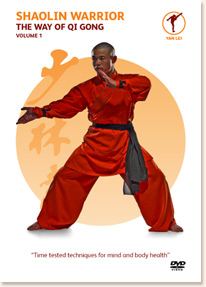 shaolin warrior vol 1 the way of qigong